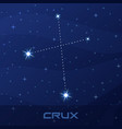 constellation crux cross night star sky vector image vector image