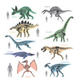 dnosaurs seletons silhouettes bone animal and vector image vector image