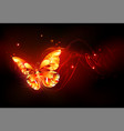 flying fire butterfly vector image vector image