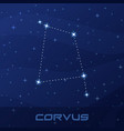 constellation corvus crow night star sky vector image vector image