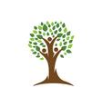 Family Tree Logo vector image vector image