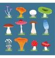 Mushrooms set vector image vector image