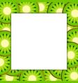 square frame on ripe kiwi vector image