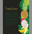 tropical fruits banner with exotic food and leaves vector image vector image