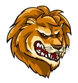 Lion mascot team label design vector image vector image
