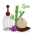 spa relax vector image