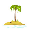 a palm tree on an island vector image vector image