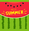 banner hello summer text on red texture vector image vector image