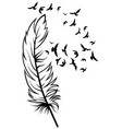 feather and birds black and white vector image vector image