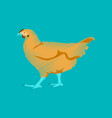 flat shading style icon hen vector image vector image