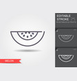 melon line icon with shadow vector image vector image