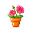 pink spring home flower in pot icon vector image vector image