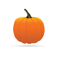 pumpkin on a color for Halloween vector image