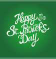text saint patricks day with decorative vector image vector image