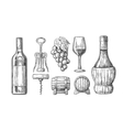 Wine set Bottle glass corkscrew barrel bunch vector image