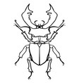 beetle deer horned beetle big insect line art vector image vector image