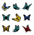 Butterfly of colorful icon set vector image
