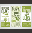 collection of olive oil labels 01 vector image vector image