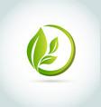 green organic leafs icon vector image vector image