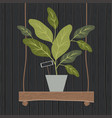 houseplant on swing wooden decoration vector image vector image