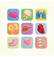 Human organs isolated icons vector image vector image