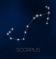 Scorpius constellation vector image vector image