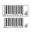 Two barcodes vector image