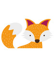 colorful adorable fox wild animal of the forest vector image vector image