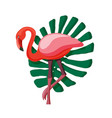 exotic flat summer print with flamingo and vector image vector image