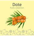 fruits collection image vector image vector image