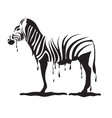 graffiti zebra vector image