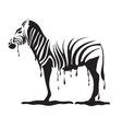 graffiti zebra vector image vector image
