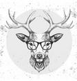 hipster animal deer hand drawing muzzle vector image vector image