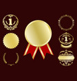 luxury gold badges vector image