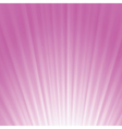 pink rays background vector image