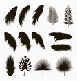 silhouettes of tropical and palm leaves vector image vector image