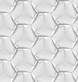 Slim gray sea shells vector image vector image