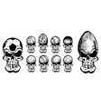 ball skulls vector image