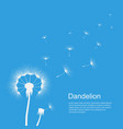 dandelion on blue template poster vector image vector image