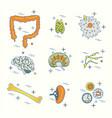 immune system icon set vector image