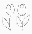 tulip one line drawing continuous line flower vector image vector image