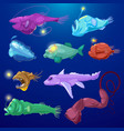 angler fish seafish predator character vector image