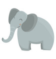 cartoon elephant an vector image vector image