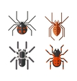poisonous spiders vector image vector image