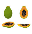 set with papaya vector image