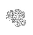 sunflower flower plant coloring book entangle vector image vector image