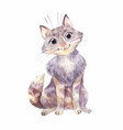 watercolor gray kitten isolated on white funny vector image vector image