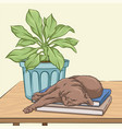 brown cat sleeping on a wooden table vector image