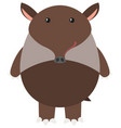 brown tapir on white background vector image vector image