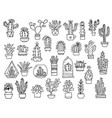 cactuses hand drawn outline cactus set cacti vector image vector image